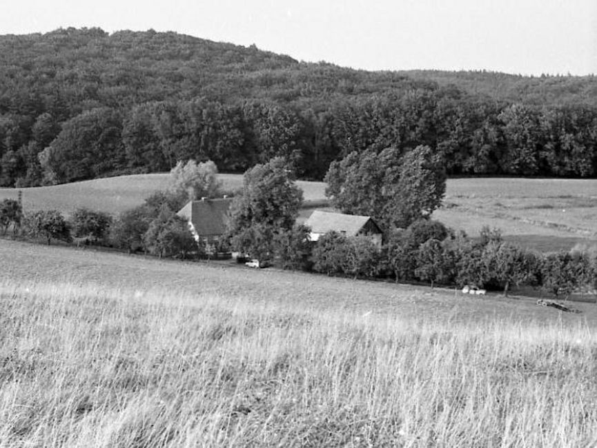 Das schwarz-weiße Lichtbild zeigt den Blick ins Tal. Dort stehen zwei Häuser, die unbefestigten Wegen werden von Bäumen gesäumt. Danach steigt wieder ein Hügel an, der dicht bewaldet ist.