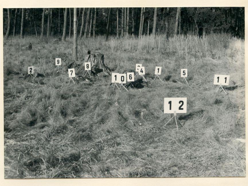 [Das aufgeklebte schwarzweiße Fotopositiv zeigt eine Gräserfläche vor einem Waldrand. An diversen Stellen ist das Gras geplättet, es steht recht mittig ein Baumstumpf auf der Grasfläche. Auf kleinen Metallbeinen sind weiße Zahlenkarten mit schwarzer Aufschrift (1 - 12) aus Makierungszwecken aufgestellt.]