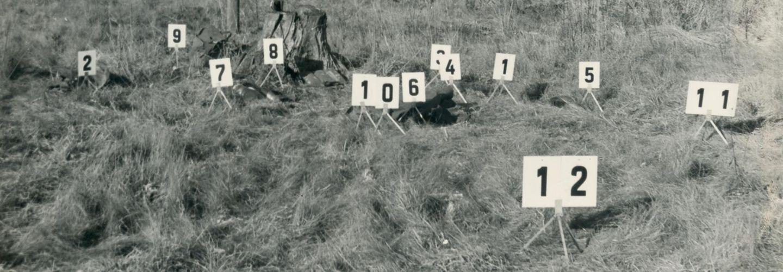 [Das schwarzweiße Fotopositiv zeigt eine Gräserfläche vor einem Waldrand. An diversen Stellen ist das Gras geplättet, es steht recht mittig ein Baumstumpf auf der Grasfläche. Auf kleinen Metallbeinen sind weiße Zahlenkarten mit schwarzer Aufschrift (1 - 12) aus Makierungszwecken aufgestellt.]