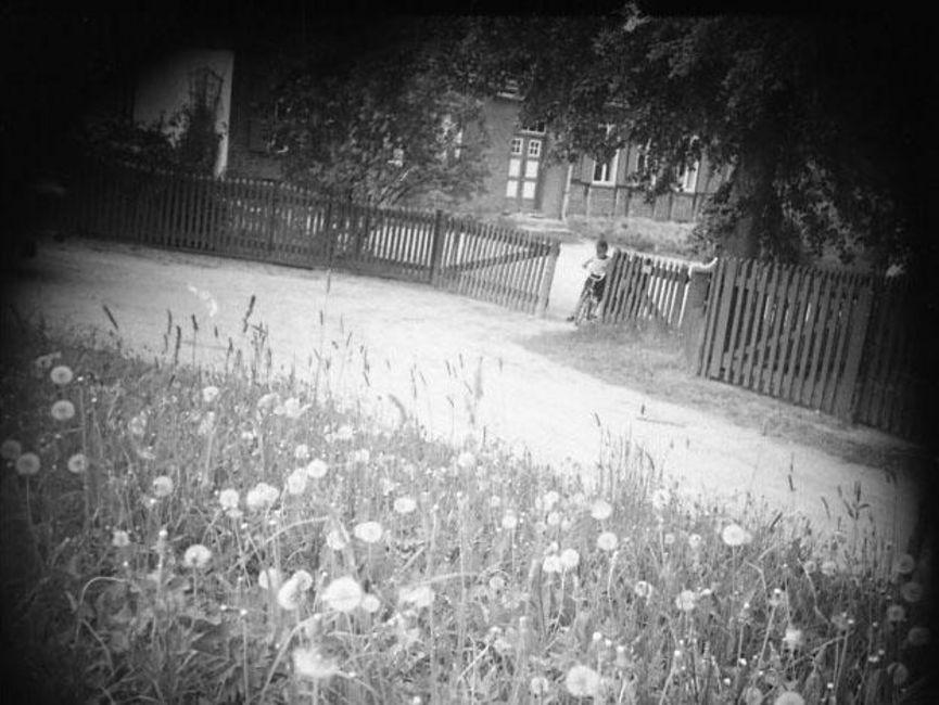 An der Unterkante des schwarz-weißen Lichtbildes stehen reife Löwenzahnpflanzen. Dahinter ist eine unbefestigte Straße zu sehen, an der ein Zaun zu einem Grundstück mit Fachwerkhaus grenzt. Im geöffneten Tor steht ein Kind mit Fahrrad. Die Ecken sind abgedunkelt, vermutlich wurde das Foto verdeckt aufgenommen.