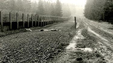 Tatortfoto der Stasi von dem Ort, an dem Heiko Runge versuchte, die Grenze zu überwinden, und wo ihn die tödlichen Schüsse trafen