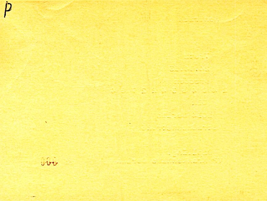 [Die Rückseite des gelben 'Formblatts 16' ist unbedruckt. Handschriftlich wurde ein P in die linke obere Ecke vermerkt.]
