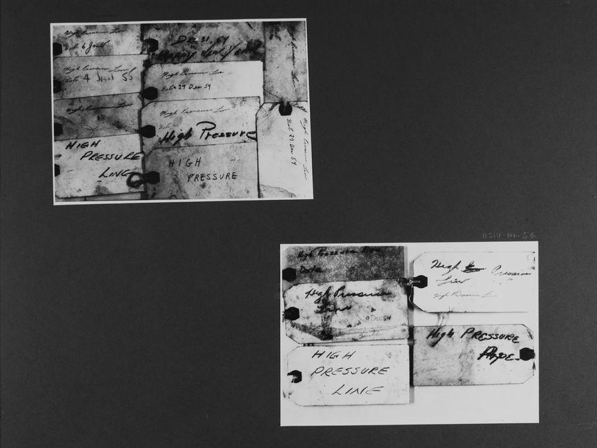 [Bild 1 und 2: Mehrere Etiketten nebeneinander gereiht. Sie sind alle in Englischer Sprache von Hand beschriftet, nur die wenigstens sind mit einem Datum (Dezember 1954 - Januar 1955) versehen.]