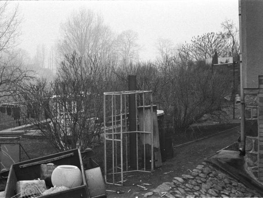 Gezeigt wird ein vermeintlicher Hinterhof. Auf der linken Seite steht etwas Unrat, im Hintergrund ist ein Wäscheplatz auszumachen. Das Gelände ist von kahlen Gebüschen und Bäumen durchzogen. Es handelt sich um ein schwarz-weißes Lichtbild