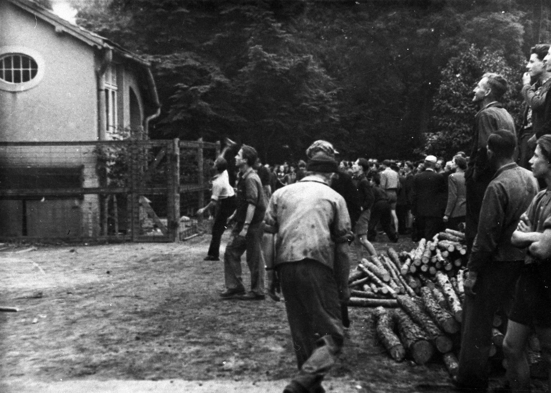 Stürmung der Kreisdienststelle der Staatssicherheit in Niesky am 17. Juni 1953. Auf dem Schwarz-Weiß-Bild sieht man eine Gruppe von Menschen, die sich vor einem umzäunten Haus versammelt hat. Im Vordergrund stehen junge Männer, die ihren Blick auf das Gebäude richten. Neben ihnen liegt ein kleiner Haufen Holzscheite. Einer der Männer wirft einen Stein.