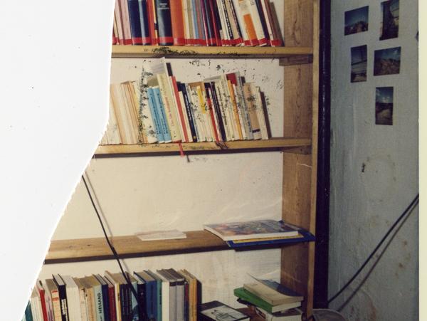 Bücherregale im Keller der Umweltbibliothek.
