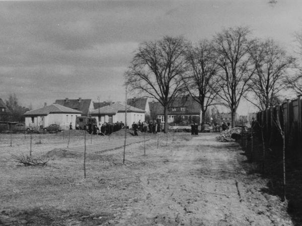 Das Bild zeigt, hinter einigen Reihen kahler Jungpflanzen, zahlreiche dunkel gekleidete Personen, die um zwei Erdhügel herum stehen. Daran vorbei führt eine unebene, unbefestigte Zufahrt. Im Hintergrund sind Ein- und mehr Familienhäuser zu sehen.